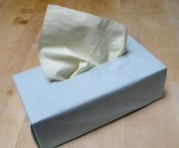 Tissues aren't a bad idea if you plan to read this...